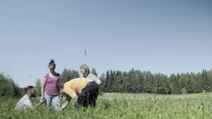 Filip, Linda, Peter och Aira plockar potatis.