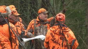 Marko Setälä var jaktledare för vargjakten i Virmotrakten.