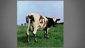 Omslaget till Pink Floyd-skivan Atom Heart Mother.