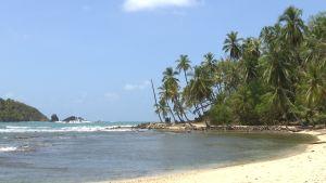 Panamalainen hiekkaranta.