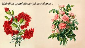 Hjärtliga gratulationer på morsdagen...