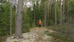 Toimittaja eksyneenä keskellä metsää