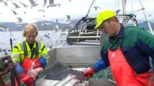 Tor är sjösame och bor på Stjernøya med sin fru där de livnär sig på fiske.