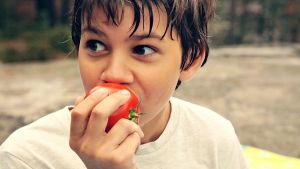 Pojke äter äpple