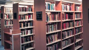 Kirjoja hyllyssä.