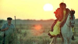 Mies sauva kädessä ja kaksi flamencoasuissa ratsastavaa naista aamuauringon noustessa.
