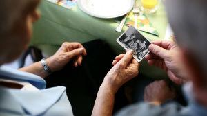 Kaksi vanhusta katsoo vanhaa valokuvaa