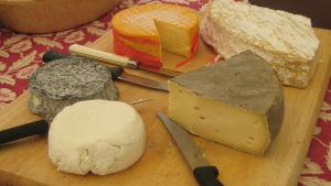 Puisella alustalla viisi erilaista ranskalaista juustoa ja juustoveitsiä.