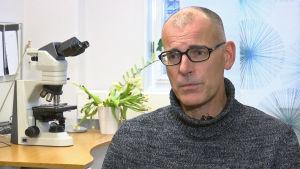 Ylilääkäri Ingemar Thiblin, Ruotsin oikeuslääkintävirasto