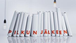 Kirjojen Suomi - Pilkun jälkeen -tunnus