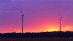 Salon tuulivoimalat auringon laskiessa.