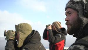 Espen och hans kolleger står på däck och spejar efter sälar.