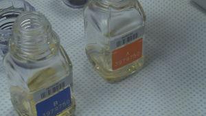 Urinprov i flaskor.