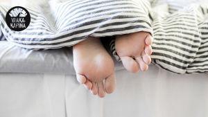 Varpaat ja jalkapohjat tulevat esiin raidallisen peiton alta. Kuvan vasemmassa yläkulmassa musta Vaakakapina-logo.