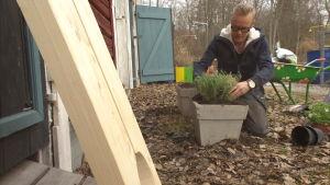 Jim planterar örter