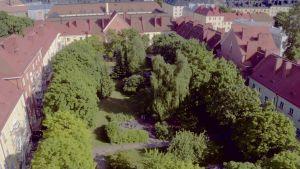 Taivaalta kuvattu kaupungin tiivis korttelipiha. Punakattoisten keltaisten ja punaisten talojen väliin jää suuri vihreä sisäpiha. Pihalla on suuria puita, pensaita ja nurmikkoa.