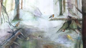 linnunlaulu