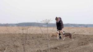 Tuhkimotarinoiden Tiina koirien kanssa pellolla.