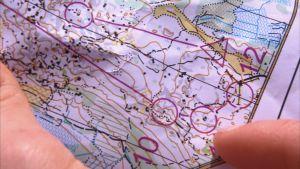 Detalj av en orienteringskarta med kontrollpunkter.