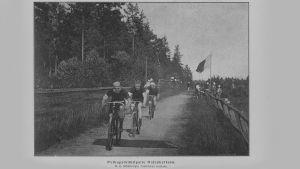 Polkupyöräkilpailu Oulunkylässä v. 1894, johdossa Arvid Lind.