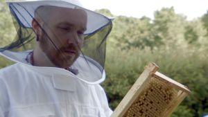 Mies valkoisessa mehiläistarhurin suojapuvussa pitelee käsissään mehiläiskennoa.