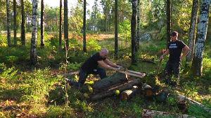 män sågar i skog