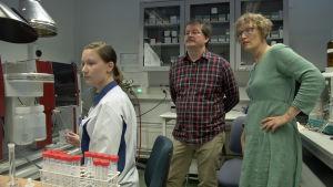 Östra Finlands universitet undersöker fem flaskor med silvervatten. På bilden från vänster Sonja Holopainen, Jouko Vepsäläinen och Annvi Gardberg (Yle).