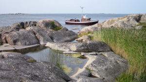 Kallioinen merenranta.