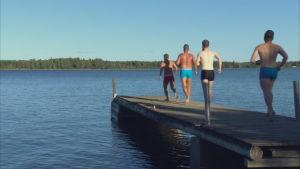 pö hoppar snart i vattnet från bryggan