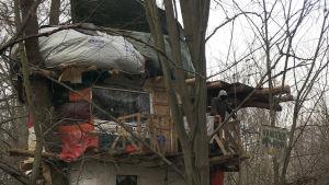 Sedan fem år är Hambacher forts ockuperad. Demonstranterna bor i träkojor i skogen