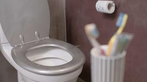 vessanpönttö ja hammasharjat