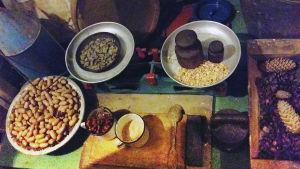 Virtahevon ruokia piirityksen aikana Leningradin eläintarhan piiritysmuseossa.
