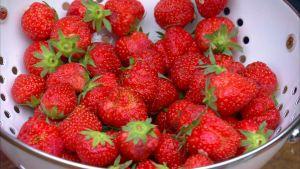 Röda jordgubbar i durkslag