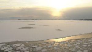 Vy över skärgårdshavet på vintern, ett tunt lager is ligger på vattnet.