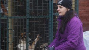 Aino Arjas och andra frivilliga från Viipurin koirat besöker ofta hundgårdarna i Viborg.