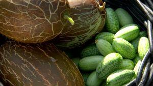 Korg med mönstrade gurkor.