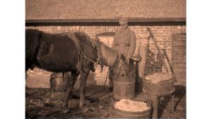 Suojeluskuntalainen ruokkii hevosta.
