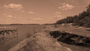 Piikkiön Harvaluodon saha