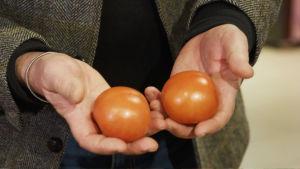 Kaksi tomaattia asiakkaan käsissä.