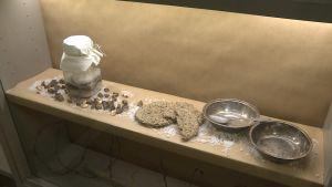 Hårt murikka-bröd, hårt saltad mat och tomma tallrikar visas på utställning 100 år efter ett fångläger för röda fångar efter inbördeskriget.