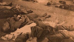 Vainajia Poliisimaneesin ruumishuoneella 14.4.1918.