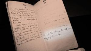 Jääkärieverstiluutnantti Erkki Hannulan päiväkirja 1918.