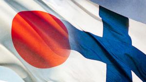Suomen ja Japanin liput