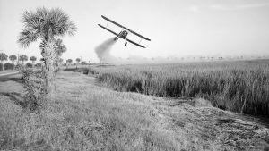 På 1950-talet använde man sig av flygplan för att bespruta åkrar med DDT.