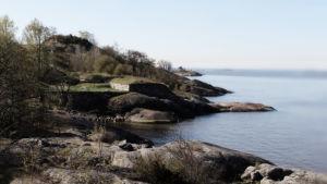 Udde på ön Skanslandet i Helsingfors skärgård.