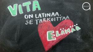 Vita on latinaa ja tarkoittaa elämää.