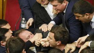 Ihmiset riitelevät parlamentissa.