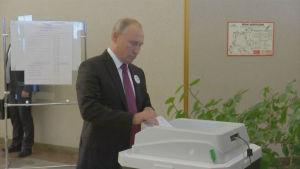 Vladimir Putin röstar i det ryska lokalvalet 9.9.2018.