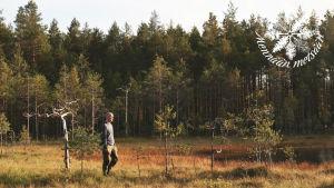 Henkilö kävelee suolla metsänreunassa.
