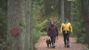 Laura Räsänen och Pekka Poutanen som går längs en naturstig med en hund.